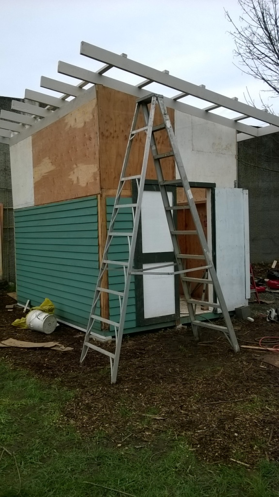 4 shed before fascia sm WP_20150208_002